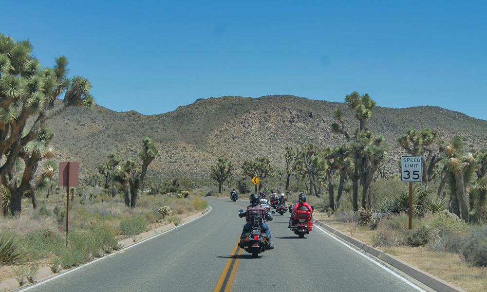 Motorrad-Reisen Joshua Tree National Park- Amerika Heller