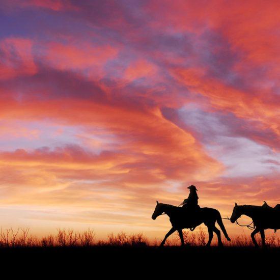 Kurven, Kaktus, Cowboy-Country | Amerika Heller Motorradreisen